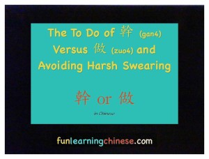 Chinese swear word