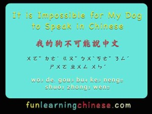 it-is-impossible-for-my-dog-to-speak-in-chinese